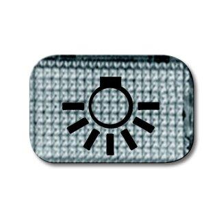 """Busch-Jaeger 2145 LI Tastersymbol transparent """"Licht"""" glasklar"""