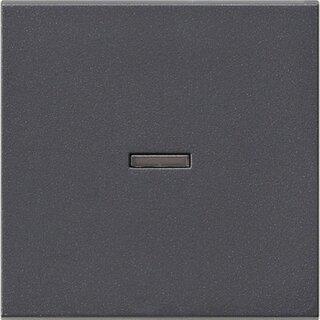 Gira 029028 Wippe Kontrollfenster System 55 Anthrazit
