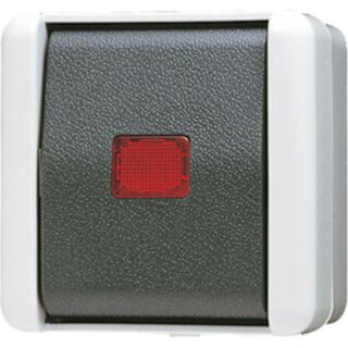 Jung Wipp-Kontrollschalter 10 AX 250 V ~ 806KOW